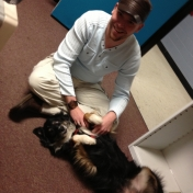 Dr. Austin Matthews, fabulous friend of WGS, visits with Scout, our too-friendly mascot.